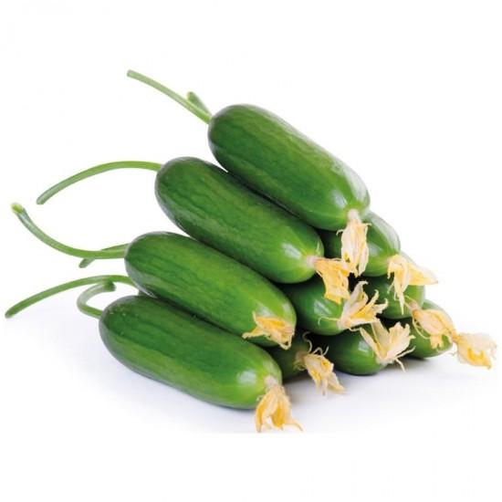 Salatalık (Çengelköy 1 Kg Paket)